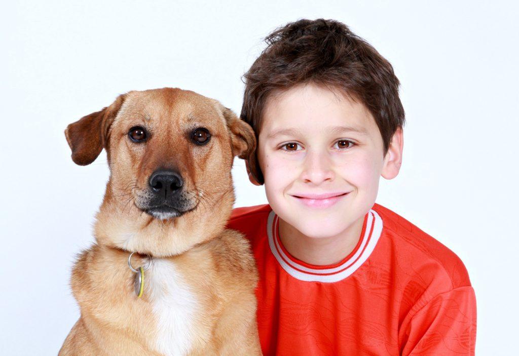 幼児教育としてペットを飼うのは良い影響を与える?